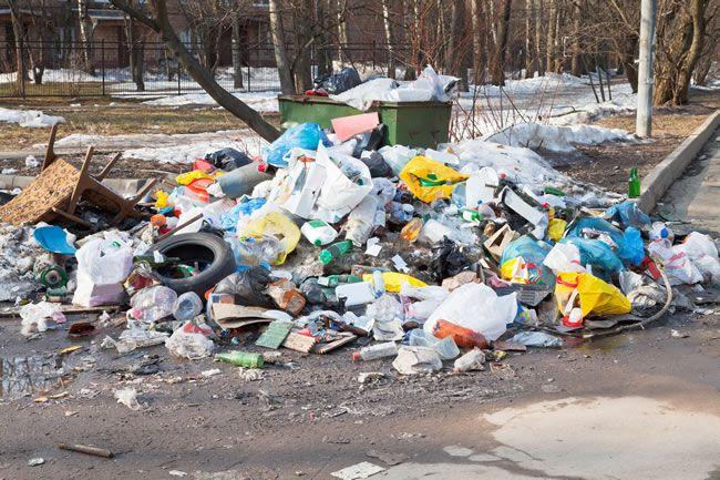 junk removal service St Louis Park MN