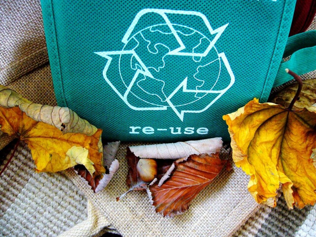 6 Reasons Why You Should Use Recyclable Products